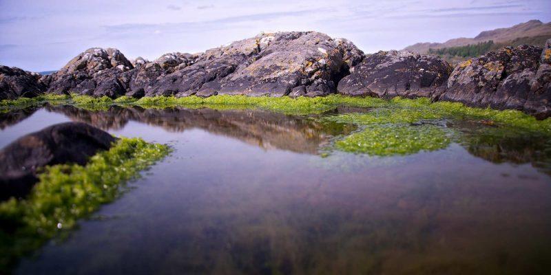 Ardnamurchdan daguitstap schiereiland Schotland met Galtic