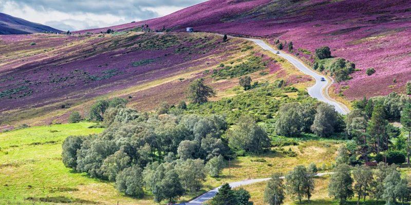 Cairngorm in Schotland Reizen met Galtic
