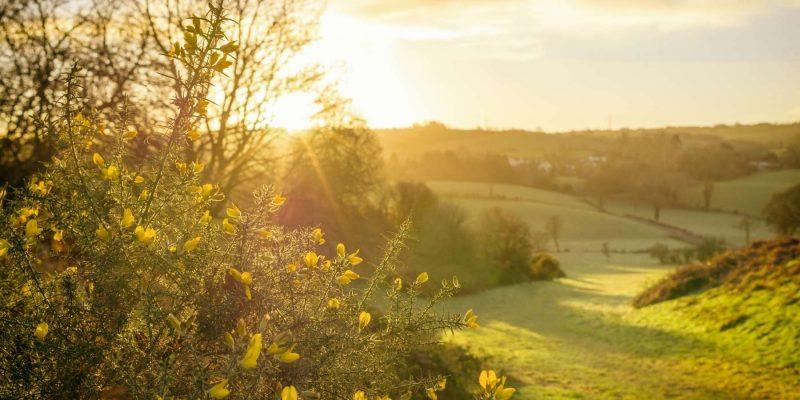Ierland zonsopgang met Galtic