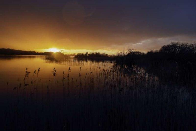 Killarney National Park Natuur in Ierland met Galtic