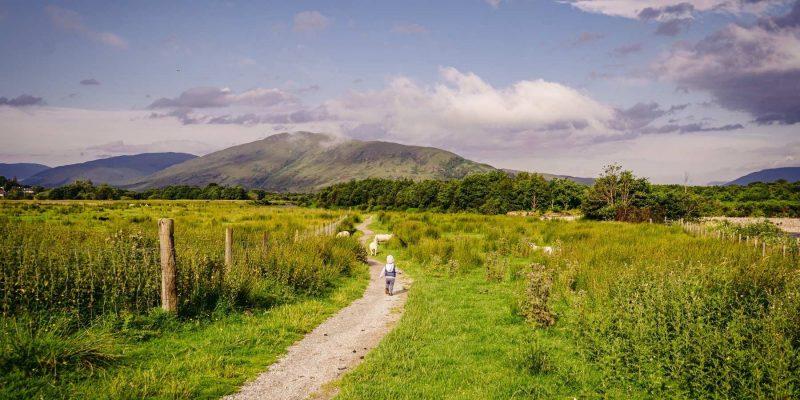Kinderen in Schotland met Galtic