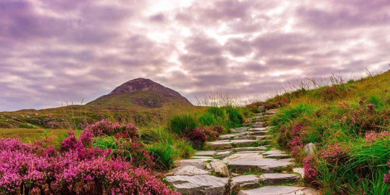 Steenpad in Ierland Reizen met Galtic