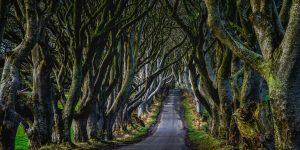 The Kingsroad in Ierland Reizen met Galtic