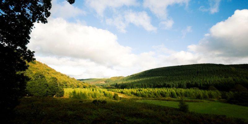 Wicklow mountains met Galtic