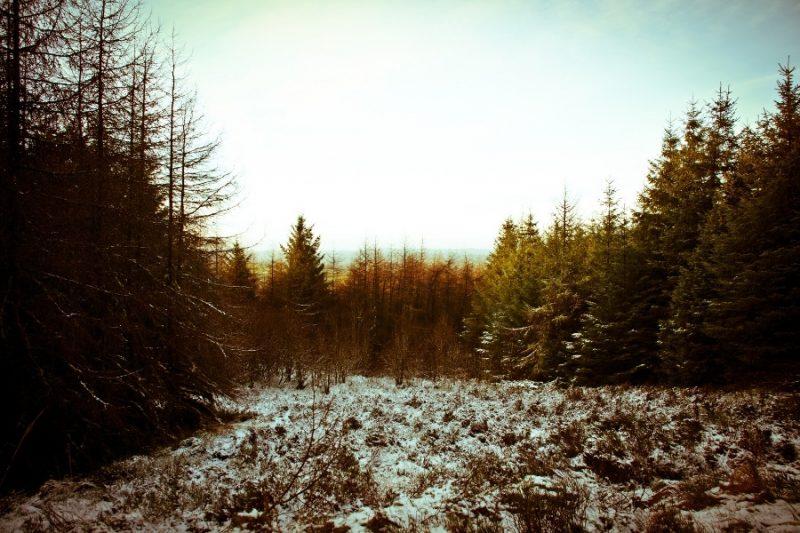 Winter in Ierland met Galtic