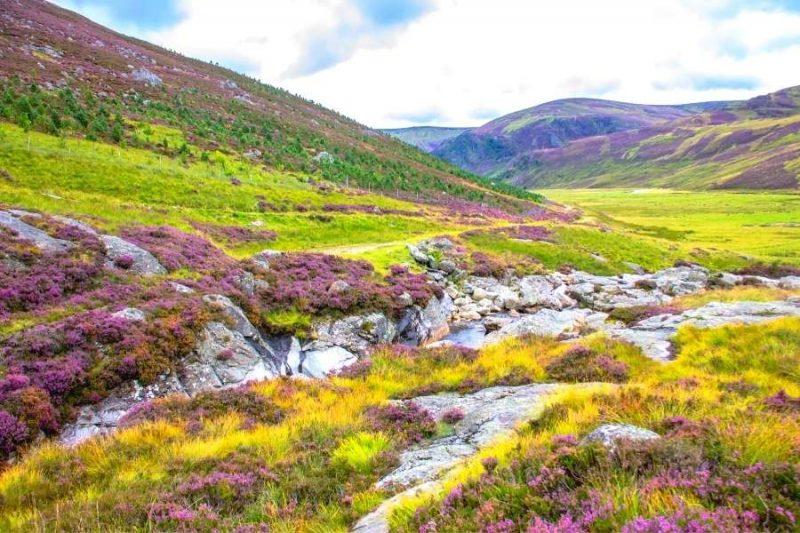 Cairngorms national park - reizen met Galtic